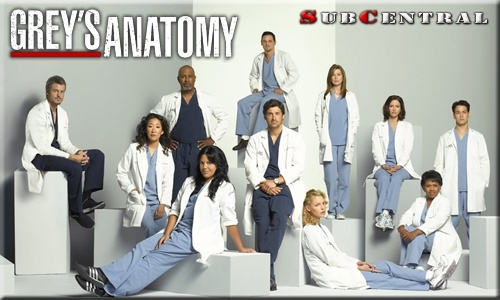 Greys anatomy s04