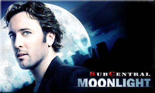 Moonlight Serie Staffel 2